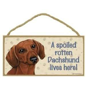 Spoiled Rotten Dachshund (Red) Lives Here   5 X 10 Door/wall Dog