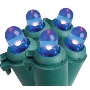 Trim a Home 50ct Dome Shape LED Light Set   Blue