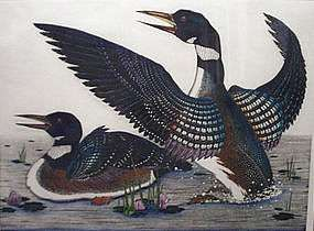 Dan Mitra Common Loons Original Signed Lithograph
