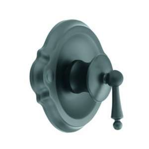 TS310WR Waterhill Posi Temp Tub/Shower Valve Only Faucet, Wrought Iron