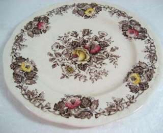 Vintage Salisbury Alfred Meakin Staffordshire England Plate 8