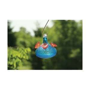 Bird Brain Radiance Glow Hummingbird Feeder Aqua Patio, Lawn & Garden