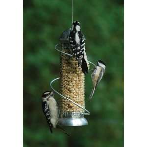 Mini Spiral Peanut Bird Feeder   Squirrel proof, 8.5 in